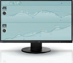 Monitor Eizo FlexScan EV2450-BK