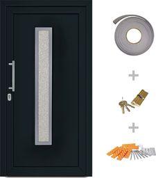 vidaXL VidaXL Drzwi wejściowe zewnętrzne, antracytowe, 98 x 200 cm