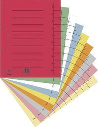 Donau Przekładka DONAU, karton, A4, 235x300mm, 1-10, 1 karta, mix kolorów