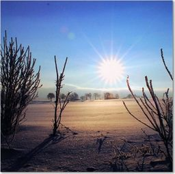 Feeby Deco Panel, Pustynne słońce  30x30