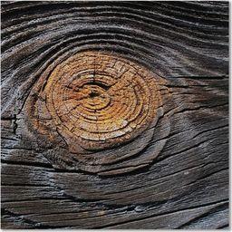 Feeby Deco Panel, Kora drzewa 30x30
