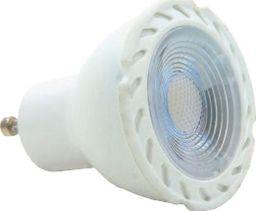 Holdbox Przezroczysta żarówka GU10 5W ciepła Holdbox LED HB29071