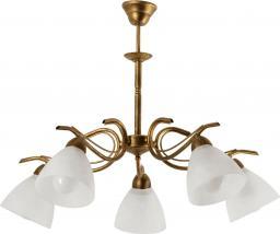 Lampa wisząca Lampex Dana 5 5x60W  (585/5)
