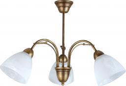 Lampa wisząca Lampex Klara 3 3x60W  (504/3)