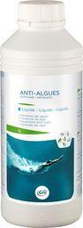 GRE Środek do pielęgnacji wody basenowej Anti Algues 1 l