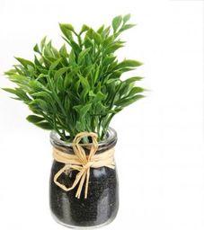 Intesi Dekoracja zioła w słoiku Cząber