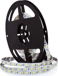 Taśma LED Polux Taśma LED 45W Polux Pasek LED
