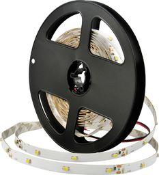 Taśma LED Polux Taśma ledowa 8,5W Polux Pasek LED