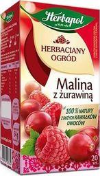 HERBAPOL Herbata owocowa Herbapol Malina z żurawiną 20szt