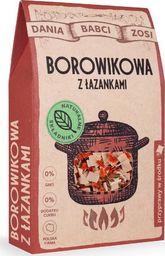 SYS BLANKA SYSIAK Zupa Borowikowa z łazankami