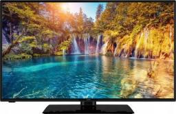 Telewizor Gogen TVF43P452T LED 43'' Full HD