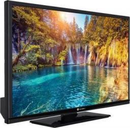 Telewizor Gogen TVF39P471T LED 39'' Full HD