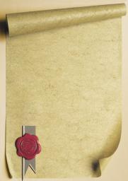 Wallner - Argo Dyplom A4 25szt. 170G pieczęć