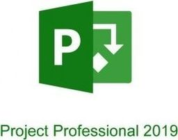 Program Microsoft Microsoft Project Professional 2019 PL