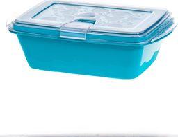 PEPCO PEPCO - pojemnik do mikrofali 0,53l niebieski