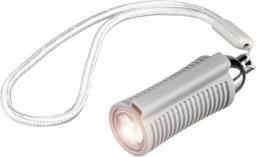 Visible Dust Swab Light (1259888)