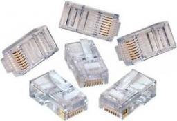 Libox Mikrowtyk 8P8C, 100x