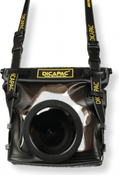 DiCAPac WP-S10 (8809176623066)