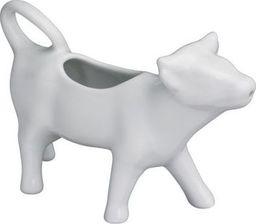 Cilio Mlecznik biały  (CI-105186)