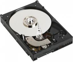 Dysk serwerowy Dell 2TB 3.5'' 7200 SATA III (400-AEGG)