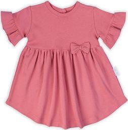 NICOL Sukienka z krótki rękawem Forest Nicol różowa 56