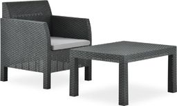 vidaXL 2-cz. zestaw wypoczynkowy do ogrodu, poduszki, PP, antracyt