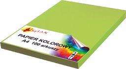 Shan Papier ksero A4 120g trawiasty 100 arkuszy
