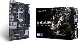 Płyta główna Biostar B250MHC