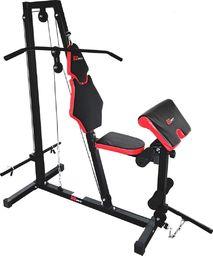 Eb Fit Atlas treningowy siłownia 6000 Eb fit