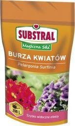Substral Nawóz Burza Kwiatów Balkon 200 g