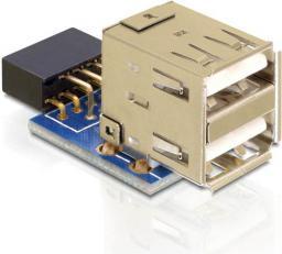 Delock USB pin - 2x USB 2.0 Czarny Niebieski Złoty (41825)