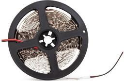 Taśma LED Abilite SMD2835 5m 60szt./m 4.8W/m 12V  (5901583547171)