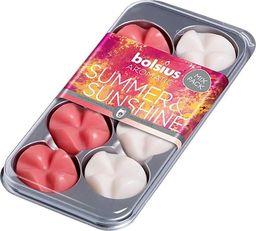 Bolsius Wosk zapachowy do kominka Aromatic Summer Sunshine 8 sztuk