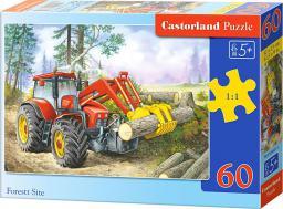 Castorland Puzzle Wycinka w Lesie 60 elementów (06601)