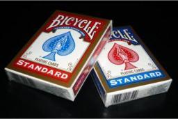 Bicycle Rider Back International Std.