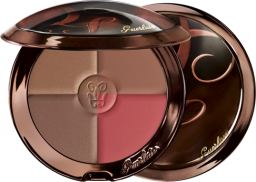 Guerlain TERRACOTTA 4 SEASONS BRONZING POWDER 08