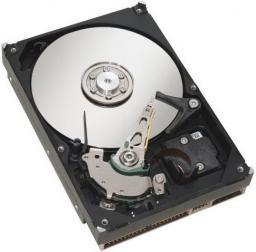 """Dysk serwerowy Fujitsu 300GB 3.5"""" 15000 SAS-3 (S26361-F5532-L530)"""