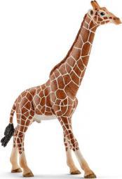 Figurka Schleich Samiec żyrafy (14749)