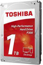 Dysk Toshiba P300  - (HDWD110UZSVA)