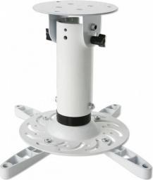 Uchwyt do projektorów Techly Sufitowy Biały (022274)