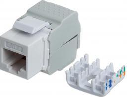 Intellinet Network Solutions Beznarzędziowy moduł Keystone, Cat.6 UTP, RJ45, Biały (167062)