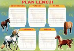 POLSYR Plan lekcji D (POLSYR PLD)