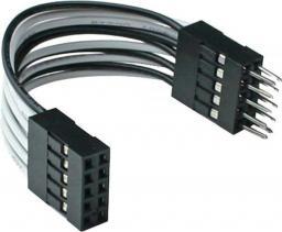 InLine USB wewnętrzny przedłużacz 2x 5 Pin męski - żeński direct 5cm (33440K)