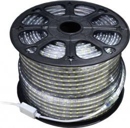 Taśma LED Art SMD3528 50m 60szt./m 4.8W/m 230V  (4201905)
