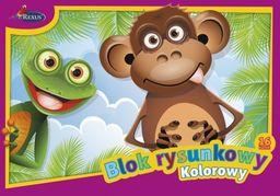 Blok biurowy Rexus BLOK RYSUNKOWY KOLOROWY A4/16 - zakupy dla firm - 011 XW