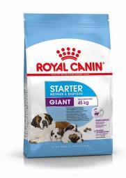 Royal Canin SHN Giant Starter M & B 15kg