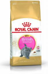 Royal Canin British Shorthair Kitten karma sucha dla kociąt, do 12 miesiąca, rasy brytyjski krótkowłosy 0.4kg