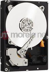 """Dysk Western Digital Black 6 TB 3.5"""" SATA III (WD6003FZBX)"""
