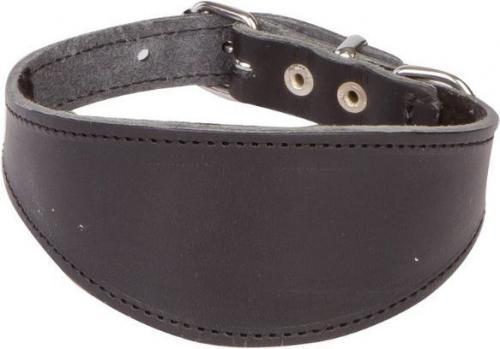 Dingo Obroża chart zapinana 1.6-6.5 x 48 cm (37-41 cm)  czarny