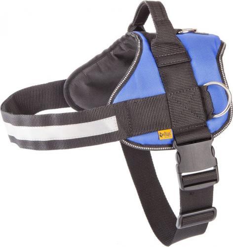 Dingo Strong rozmiar 5 Niebieskie (13491)